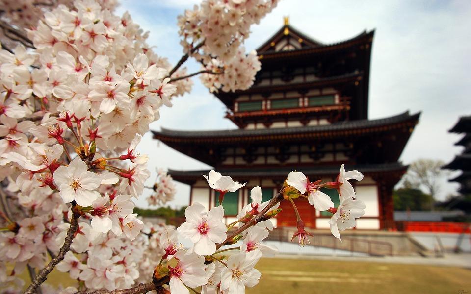 """""""Una finestra sul Giappone: chiavi di lettura di una cultura lontana, ma sempre più vicina"""""""